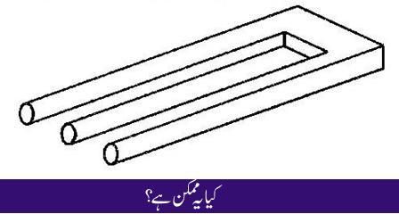 hina in urdu